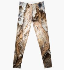 Paperbark Swamp Tree, Australia  Leggings