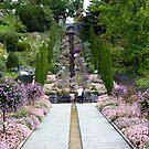 Flower stairs - Mainau by bubblehex08