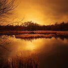 WINTER SUNSET by leonie7