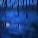 FOREST BLUES by leonie7