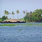 A houseboat on its quiet sojourn by ashishagarwal74