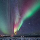 Auroras and the Milky Way by Frank Olsen