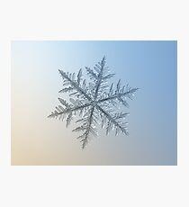 Silverware, snowflake macro photo Photographic Print