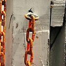 chain, chain, chain by Lynne Prestebak