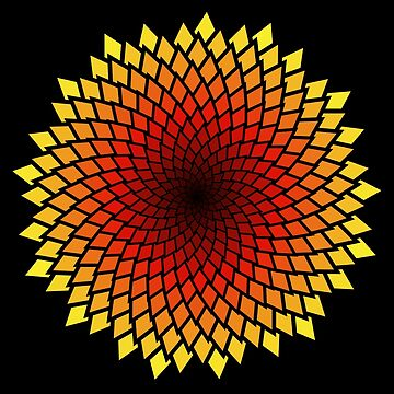 Hot spiral flower by iterograph