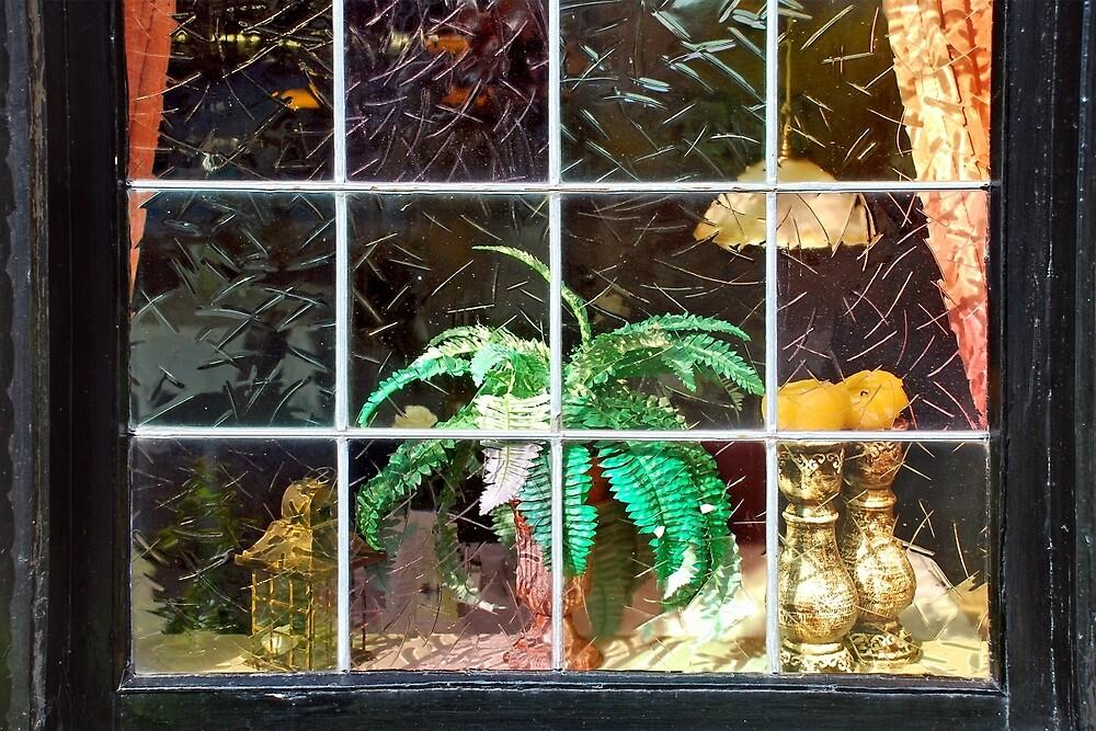 Stilllife behind the window by Arie Koene
