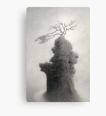 Stone of Turning Canvas Print
