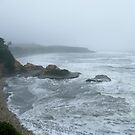 The Angry Tasman Sea, West Coast, New Zealand by Sharon Brown