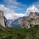 Yosemite Valley by Radek Hofman