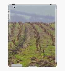 Cabbage Stumps iPad Case/Skin