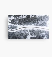 Snowy Road Canvas Print