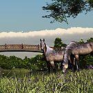 River Bridge Horses by Walter Colvin
