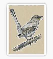 State Bird Series:  Texas - Northern Mockingbird Sticker