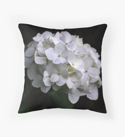 I love a White Hydrangea don't you? Throw Pillow