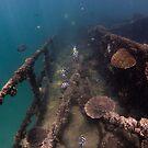 Tangalooma Wrecks - 3 by Kara Murphy