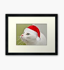 Sophies Home For Christmas Framed Print
