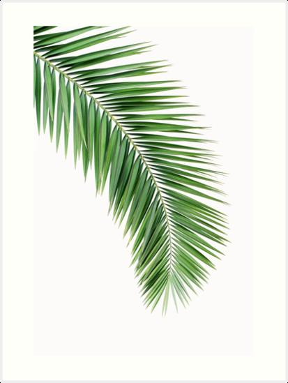 Quot Palm Leaf Wall Decor Printable Leaf Palm Printable Palm