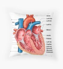 Anatomy of heart interior, frontal section. Throw Pillow
