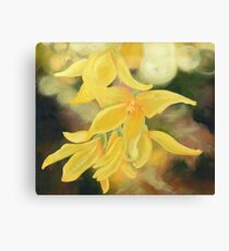 Forsythia Blossom Oil Painting by Angela Brown Art Canvas Print