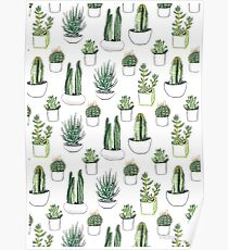 Cactus Tumblr Drawing Posters Redbubble