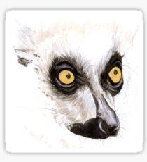 Ringtail Lemur Sticker