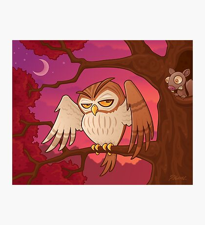 Mister Owley Photographic Print