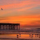 Calm Beach by Chris King