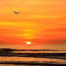 IOP Sunrise by Chris King