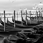 Winter on the Lagoon, Venice by hans p olsen