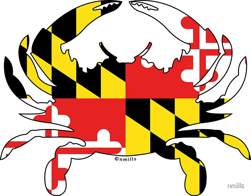 Maryland flag crab by nmills