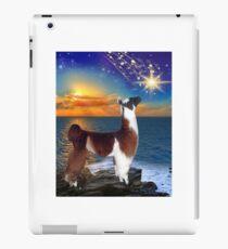 LLAMA Alpaca star gazing iPad Case/Skin