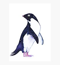Galaxy Penguin Photographic Print
