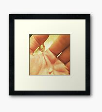 Milk Tooth Framed Print