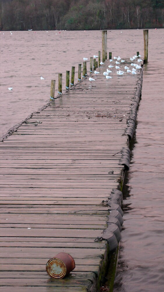 Lake Windemere by RandomAlex