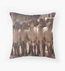 Kashgar, Animal Market Throw Pillow
