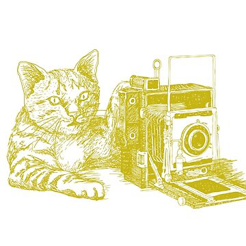 Catography by MarenMay