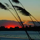 Sunset Agauam Lake Southampton New York by Brennen Cole