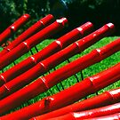 red sticks by thomask
