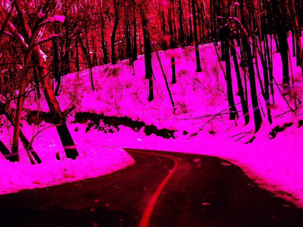Snow by HamRadio