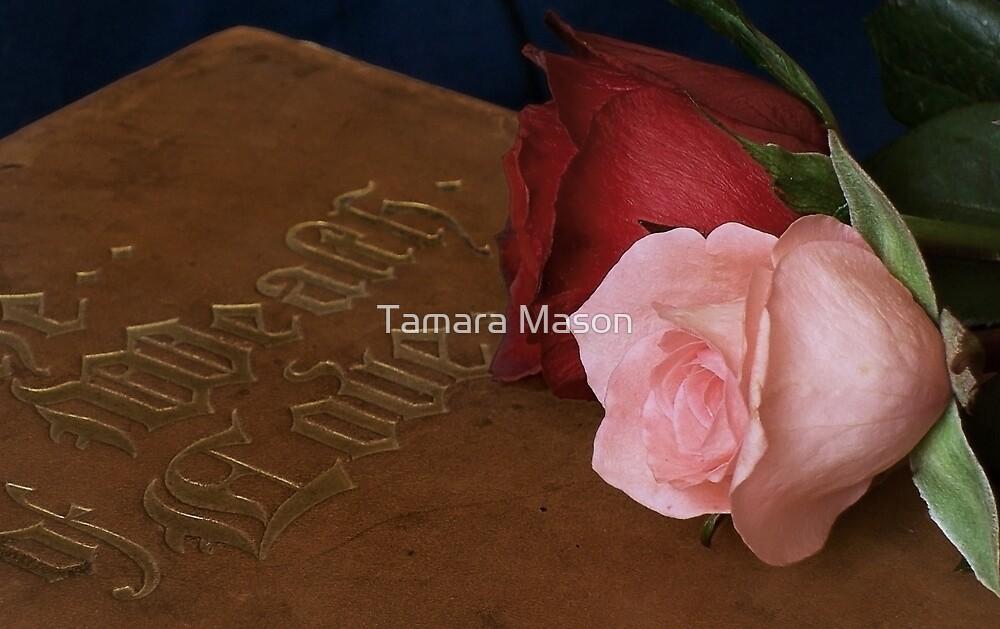 The Wealth of Love... by Tamara Mason
