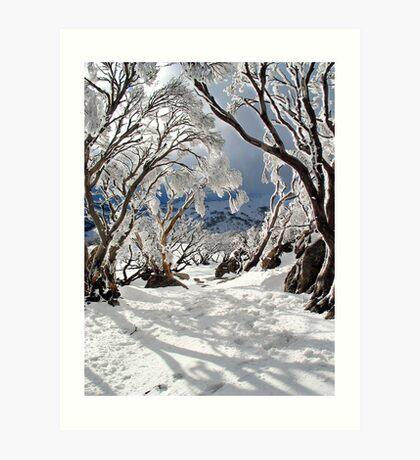 Snowgums Art Print