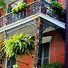 New Orleans - Ornate Balcony by ACImaging