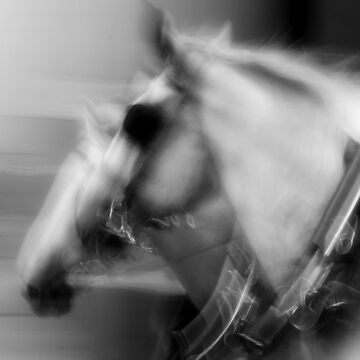 Ghost Horses by fotojux