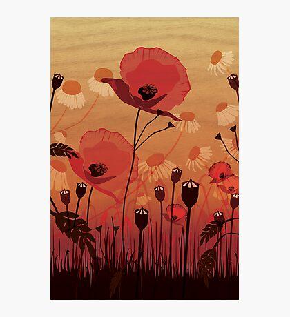 Poppies on woodgrain Photographic Print