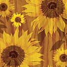 Sunflower on woodgrain by Lara Allport