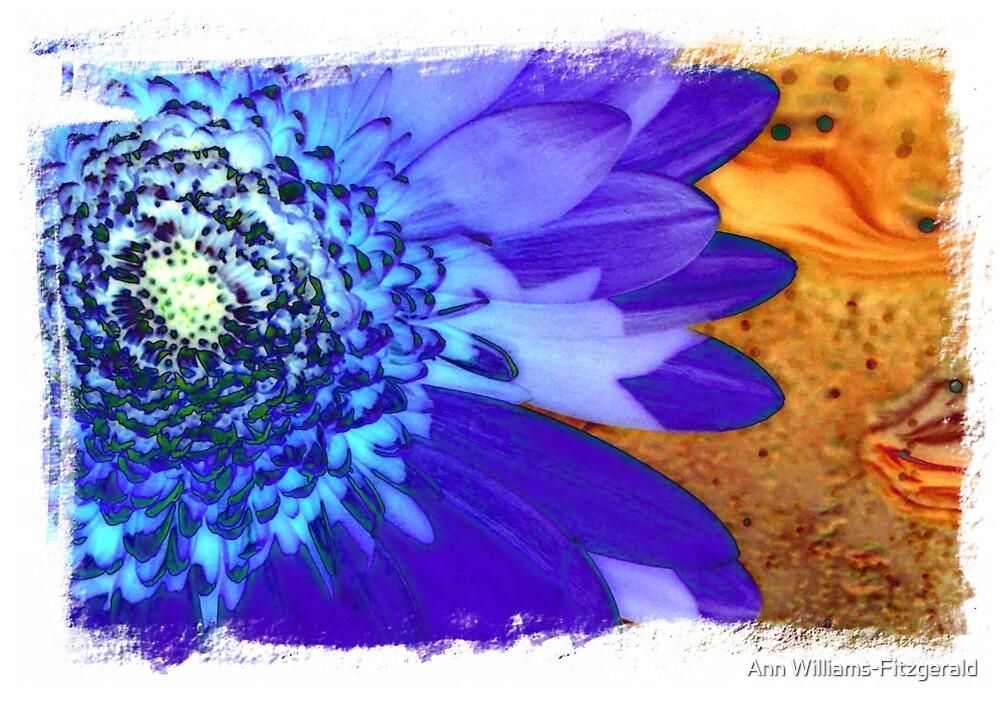 Gerbera #3 - A Floral Series by Ann Williams-Fitzgerald