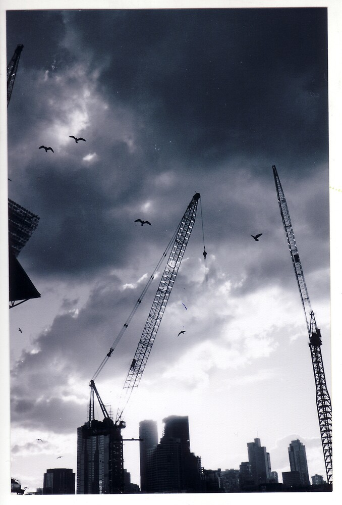 Cranes by Esther Cole