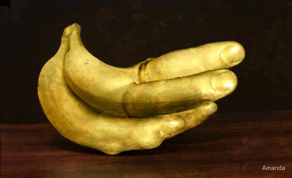 Lady Fingers by Amanda J Slack-Smith