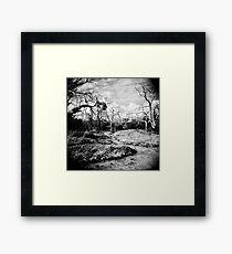 The Faraway Holga Framed Print