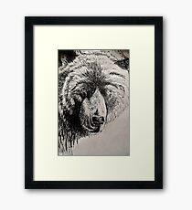 Drunk Grizzly Framed Print